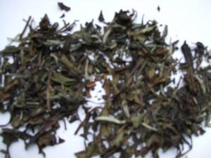 White Peony (Bai Mudan)