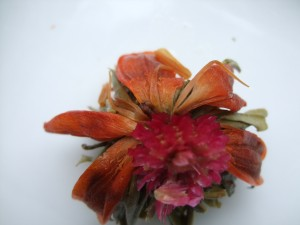 """The """"bloom"""" after steeping."""